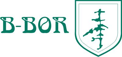 B-Bor d.o.o., zaključna dela v gradbeništvu